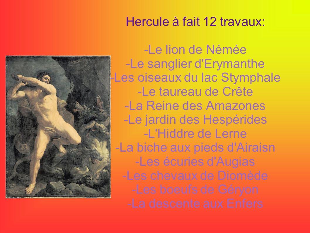 Hercule à fait 12 travaux: -Le lion de Némée -Le sanglier d'Erymanthe -Les oiseaux du lac Stymphale -Le taureau de Crête -La Reine des Amazones -Le ja