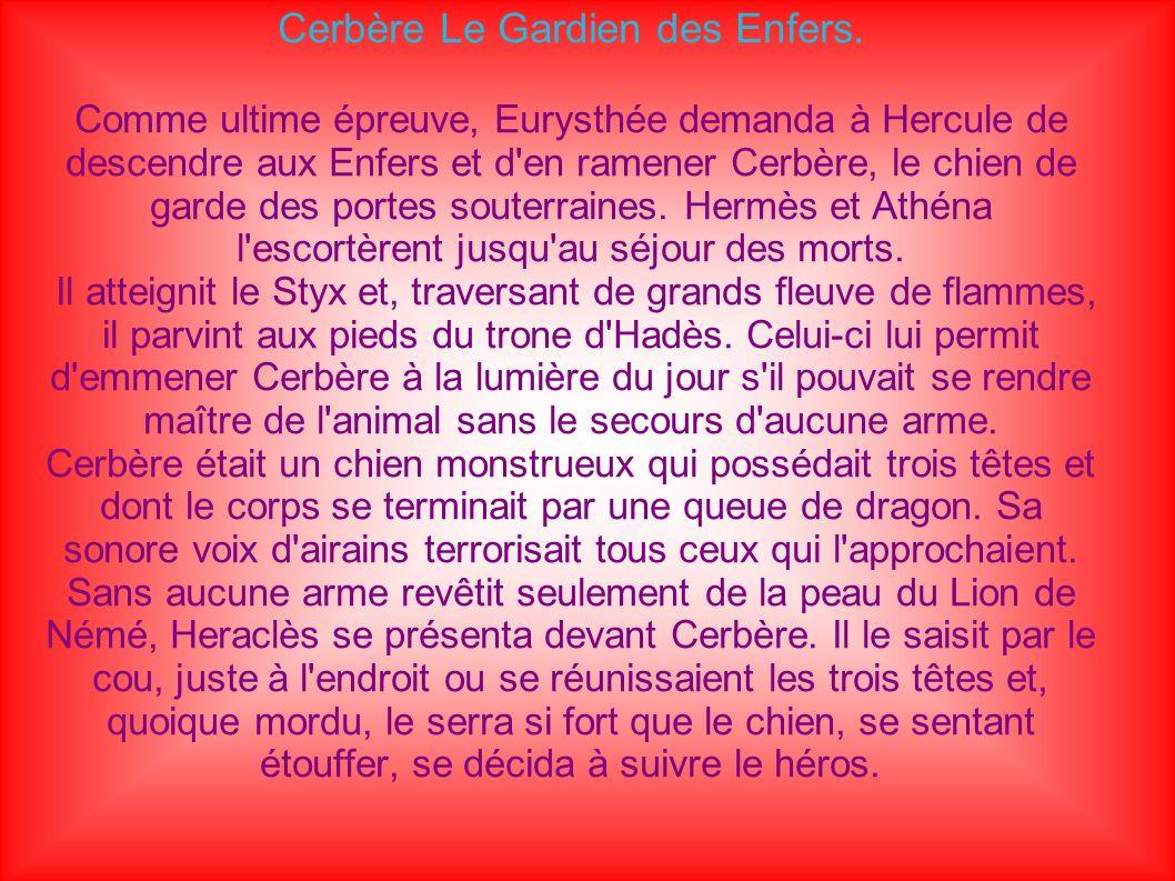 Fait par : Anna Bouziguet A : Saint-Sulpice au CDI du collège Pierre Suc Le : 31/03/09