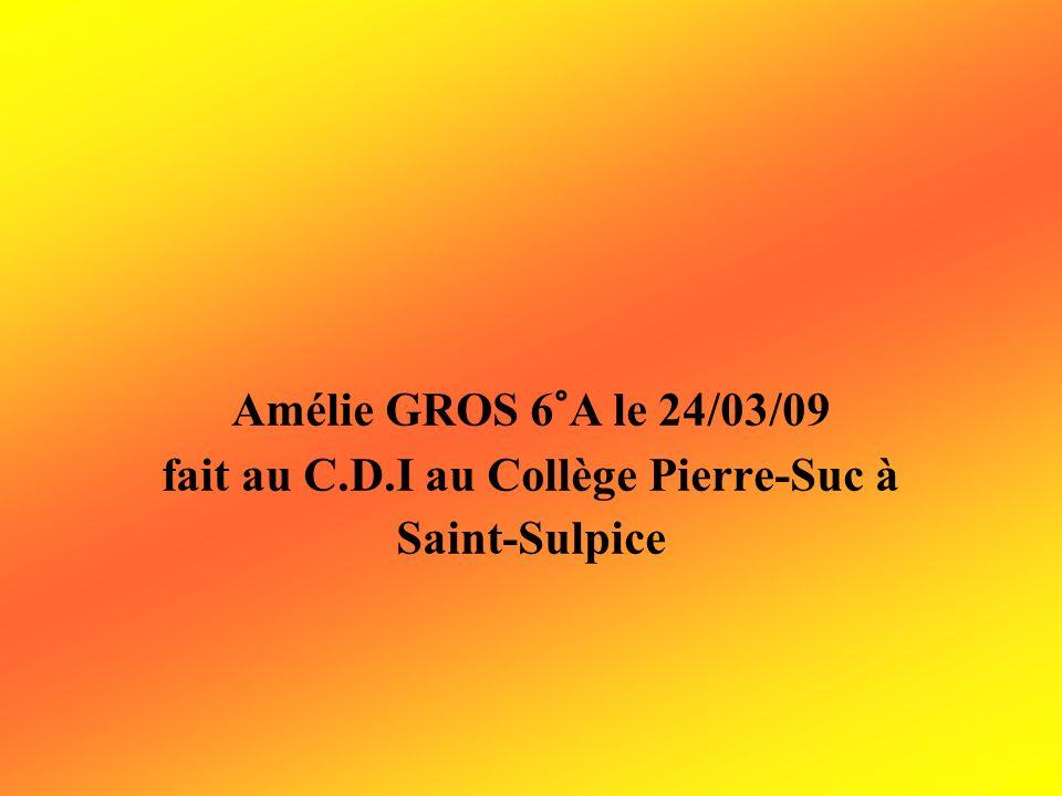 Amélie GROS 6°A le 24/03/09 fait au C.D.I au Collège Pierre-Suc à Saint-Sulpice