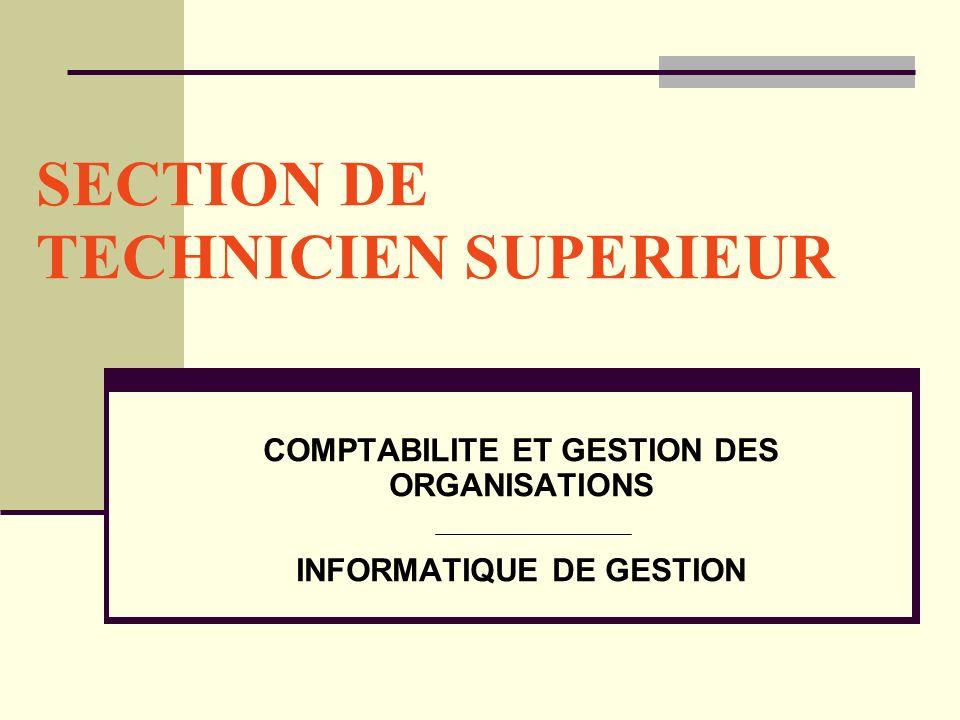 SECTION DE TECHNICIEN SUPERIEUR COMPTABILITE ET GESTION DES ORGANISATIONS INFORMATIQUE DE GESTION