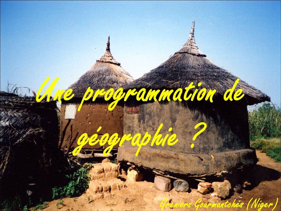 Une programmation de géographie ? Greniers Gourmantchés (Niger)