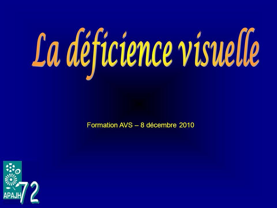 Formation AVS – 8 décembre 2010