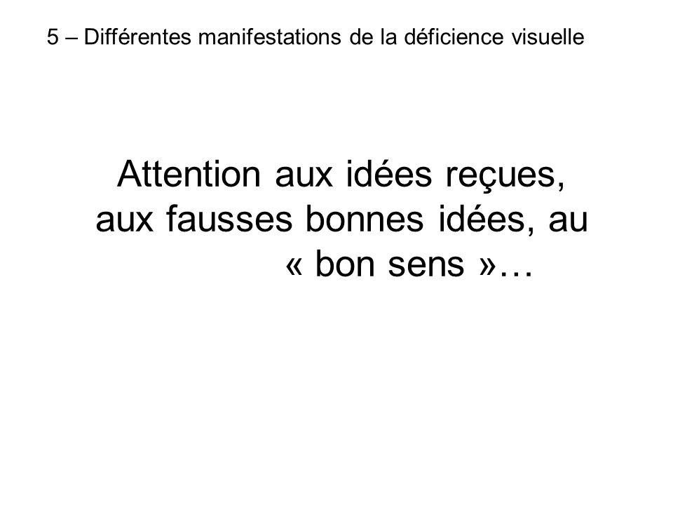 5 – Différentes manifestations de la déficience visuelle Attention aux idées reçues, aux fausses bonnes idées, au « bon sens »…