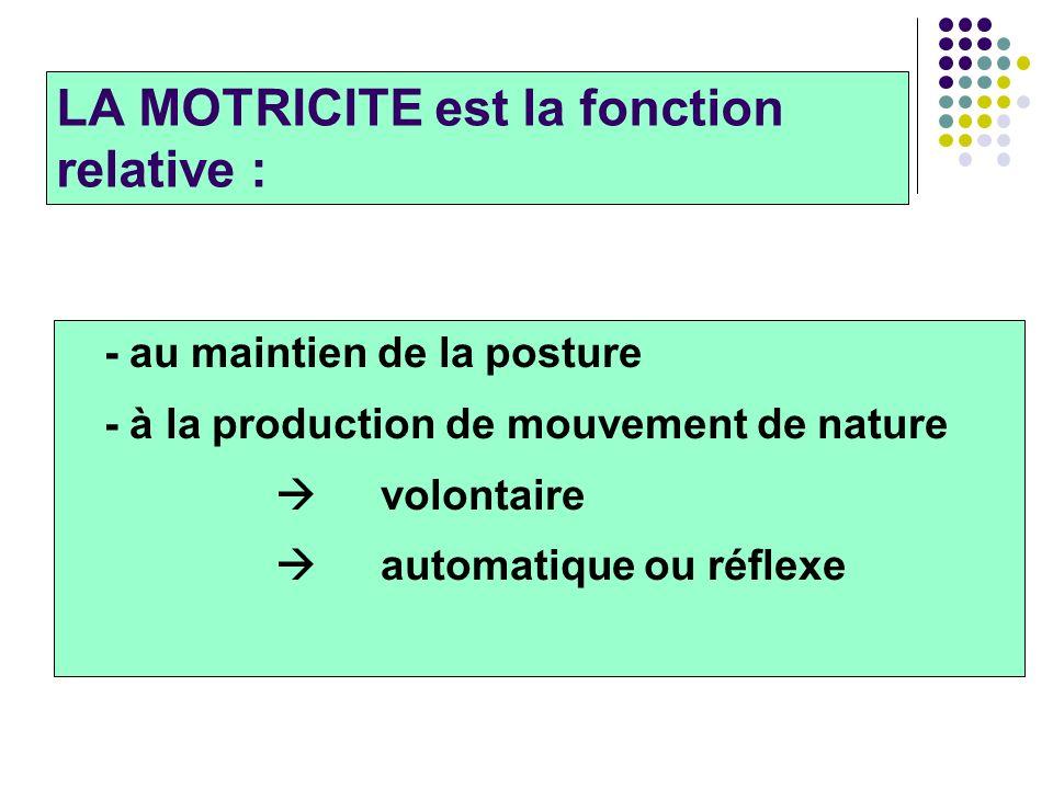 LA MOTRICITE est la fonction relative : - au maintien de la posture - à la production de mouvement de nature volontaire automatique ou réflexe