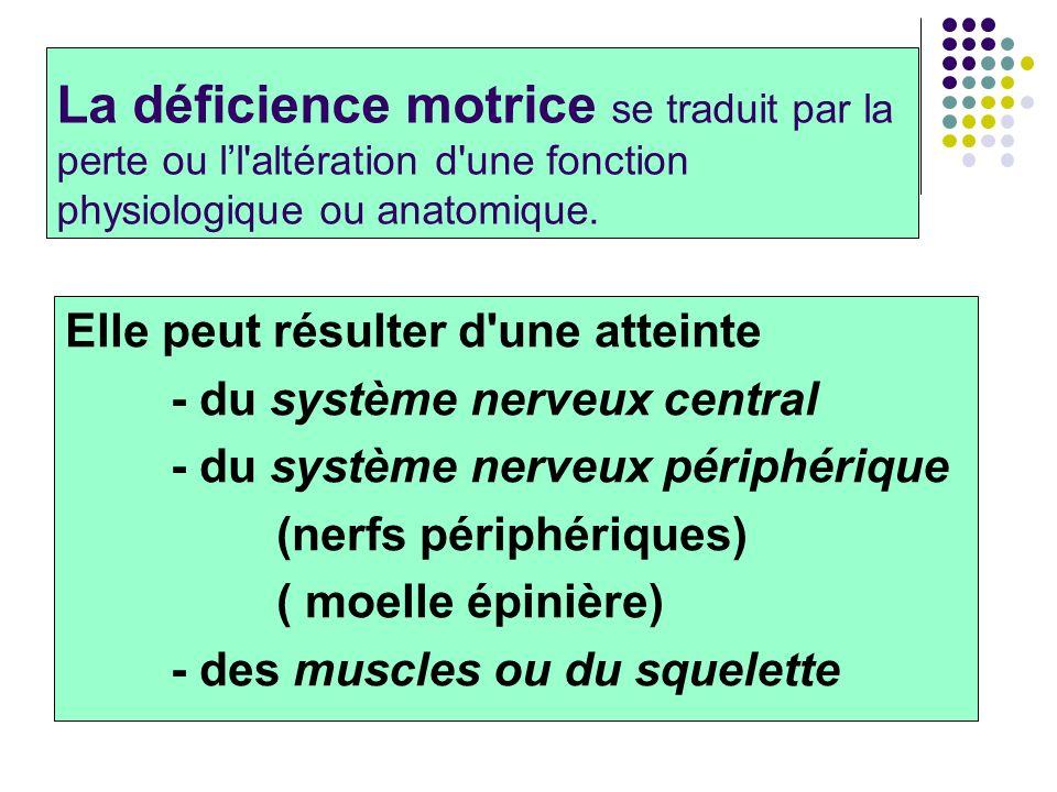 La déficience motrice se traduit par la perte ou ll'altération d'une fonction physiologique ou anatomique. Elle peut résulter d'une atteinte - du syst