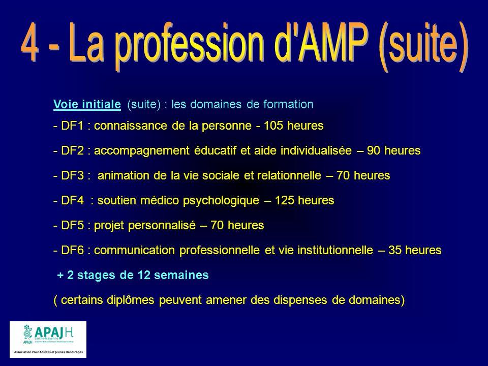 Voie initiale (suite) : les domaines de formation - DF1 : connaissance de la personne - 105 heures - DF2 : accompagnement éducatif et aide individuali