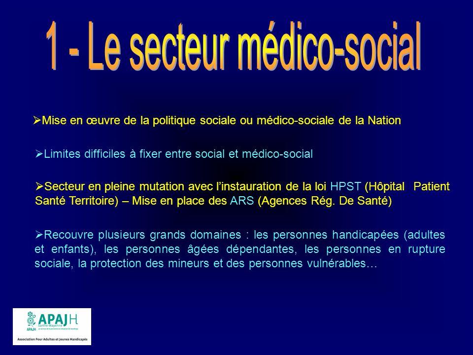 Mise en œuvre de la politique sociale ou médico-sociale de la Nation Limites difficiles à fixer entre social et médico-social Secteur en pleine mutati