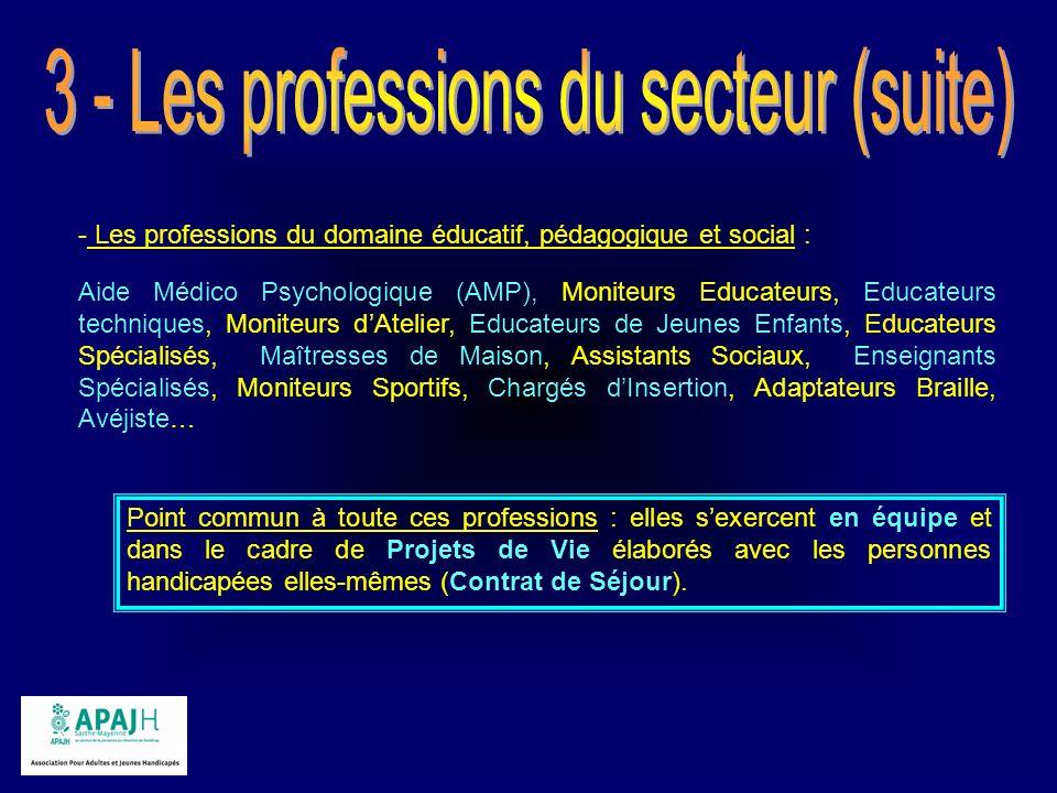 - Les professions du domaine éducatif, pédagogique et social : Aide Médico Psychologique (AMP), Moniteurs Educateurs, Educateurs techniques, Moniteurs
