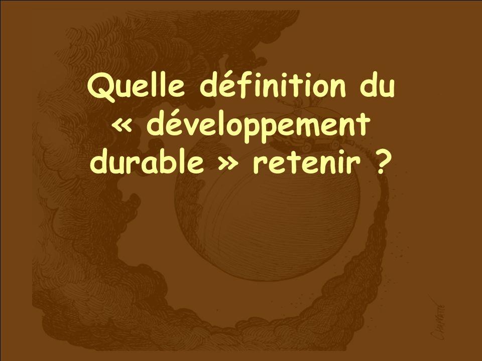 Quelle définition du « développement durable » retenir ?