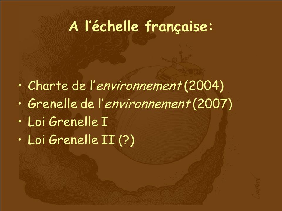 A léchelle française: Charte de lenvironnement (2004) Grenelle de lenvironnement (2007) Loi Grenelle I Loi Grenelle II (?)