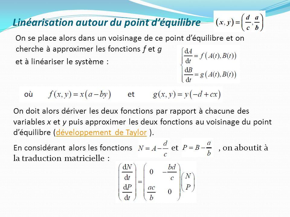 Linéarisation autour du point déquilibre On se place alors dans un voisinage de ce point déquilibre et on cherche à approximer les fonctions f et g et