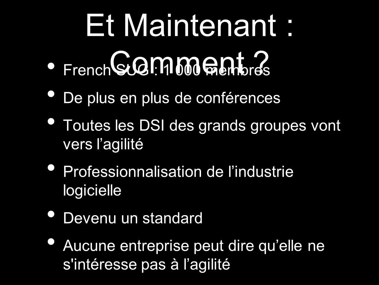 Et Maintenant : Comment ? French SUG : 1 000 membres De plus en plus de conférences Toutes les DSI des grands groupes vont vers lagilité Professionnal