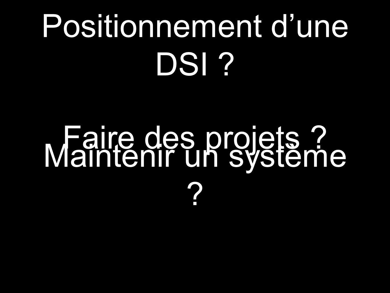 Positionnement dune DSI ? Faire des projets ? Maintenir un système ?