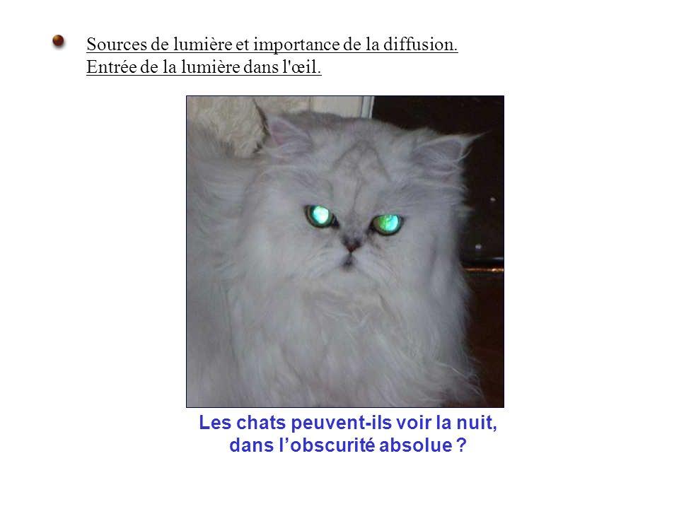 Sources de lumière et importance de la diffusion. Entrée de la lumière dans l'œil. Les chats peuvent-ils voir la nuit, dans lobscurité absolue ?