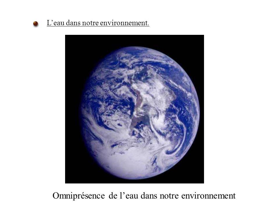 Leau dans notre environnement. Omniprésence de leau dans notre environnement
