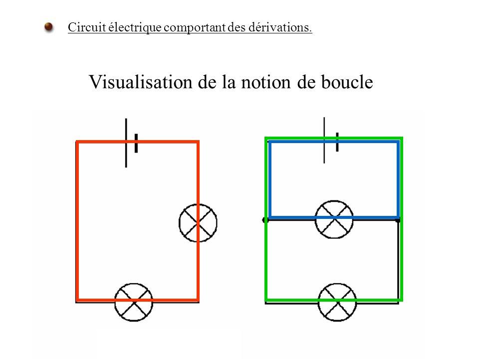 Visualisation de la notion de boucle Circuit électrique comportant des dérivations.