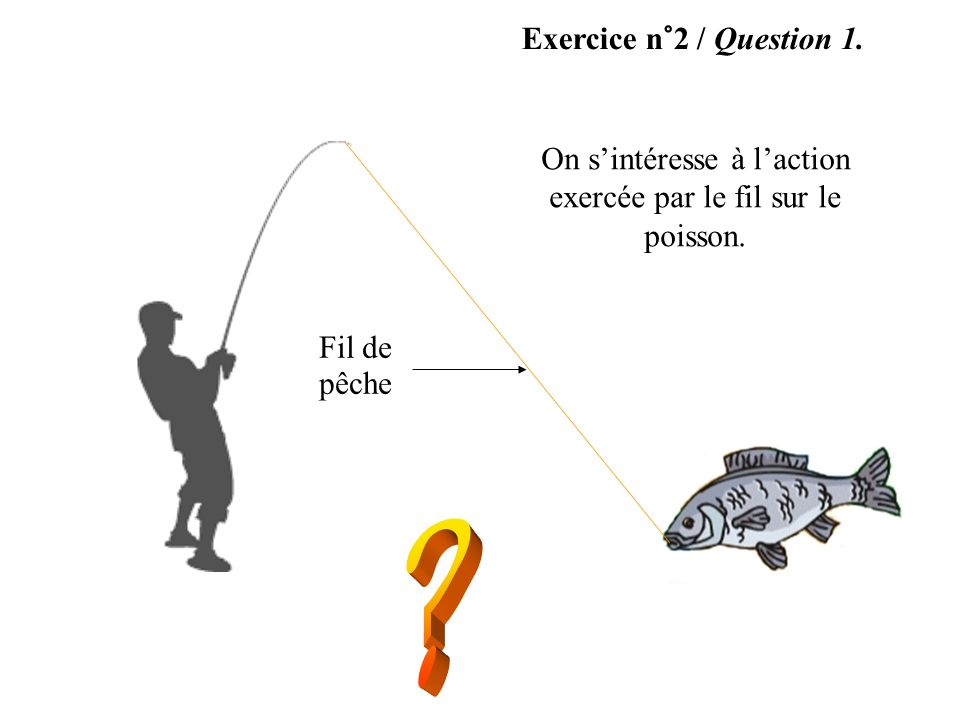 Exercice n°2 / Question 1. On sintéresse à laction exercée par le fil sur le poisson. Fil de pêche
