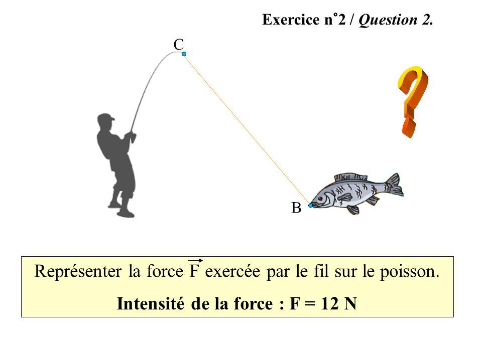 Exercice n°2 / Question 2. Représenter la force F exercée par le fil sur le poisson. Intensité de la force : F = 12 N C B