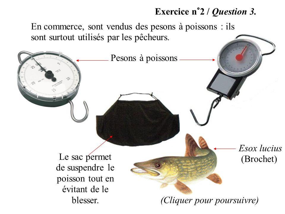 Exercice n°2 / Question 3. En commerce, sont vendus des pesons à poissons : ils sont surtout utilisés par les pêcheurs. (Cliquer pour poursuivre) Le s