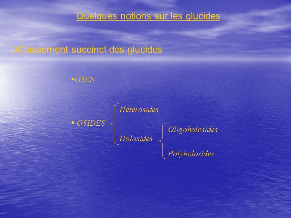 Quelques notions sur les glucides Classement succinct des glucides OSES OSIDES Hétérosides Holosides Oligoholosides Polyholosides