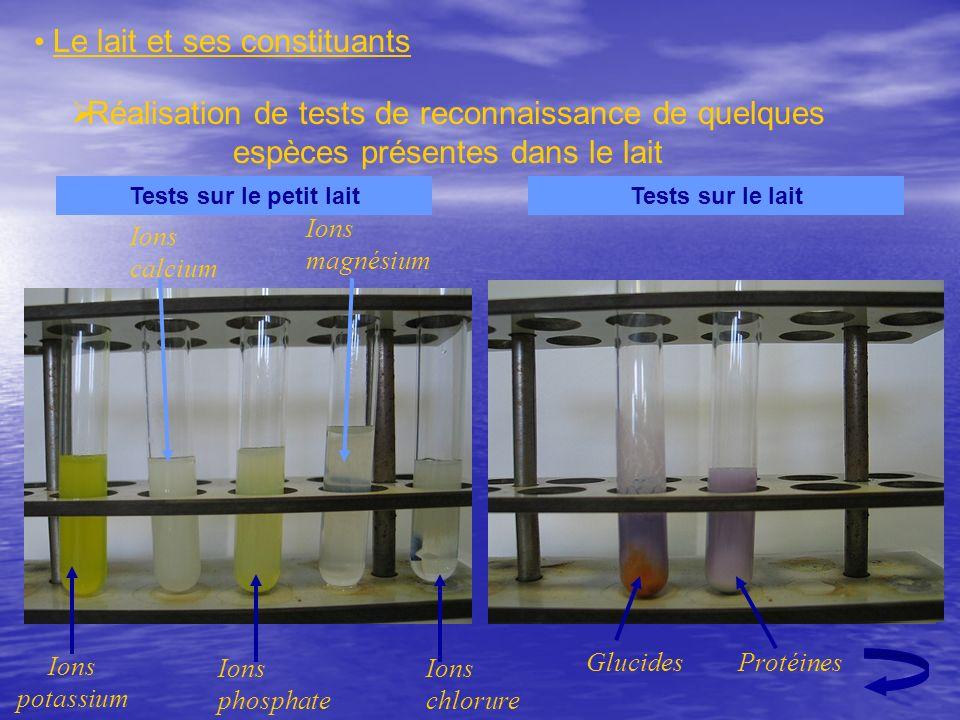 Réalisation de tests de reconnaissance de quelques espèces présentes dans le lait Le lait et ses constituants Ions potassium Ions calcium Ions phospha