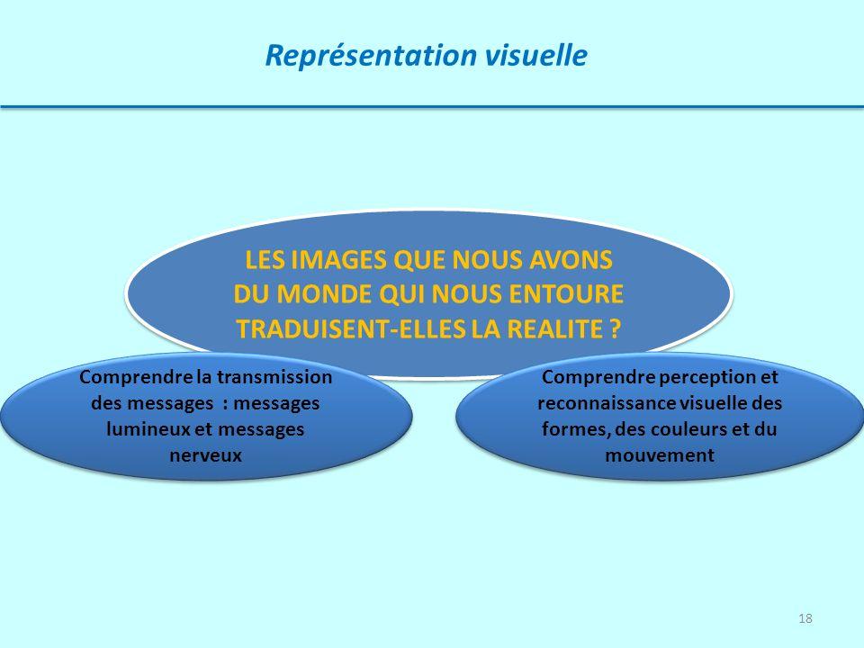 18 Représentation visuelle LES IMAGES QUE NOUS AVONS DU MONDE QUI NOUS ENTOURE TRADUISENT-ELLES LA REALITE ? Comprendre perception et reconnaissance v