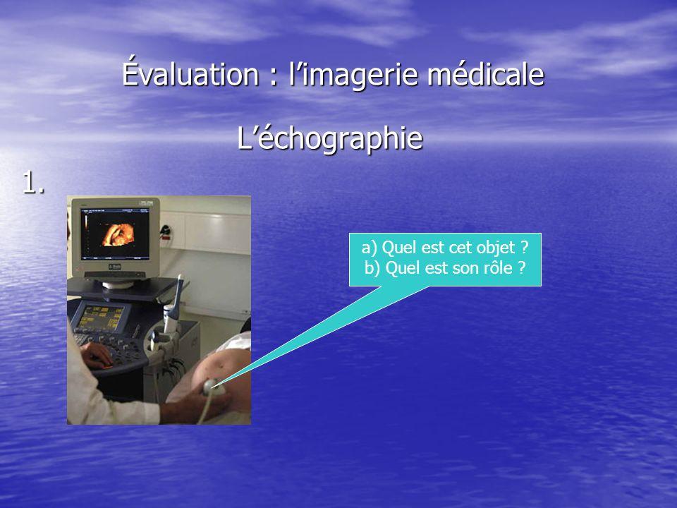 Évaluation : limagerie médicale Léchographie1. a) Quel est cet objet ? b) Quel est son rôle ?
