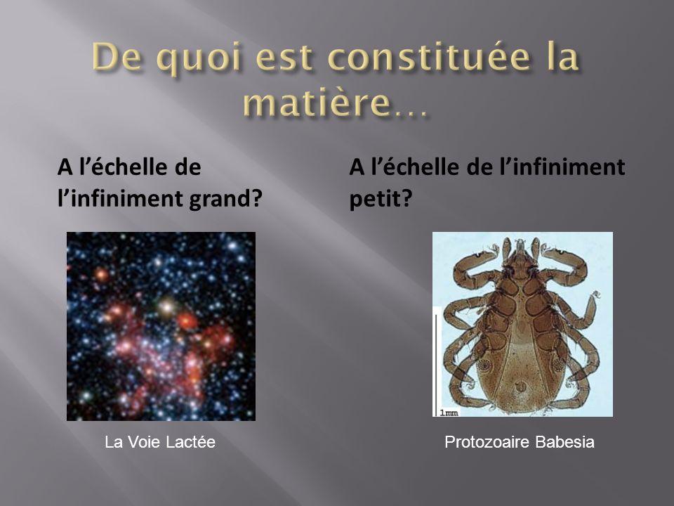 A léchelle de linfiniment grand A léchelle de linfiniment petit La Voie LactéeProtozoaire Babesia
