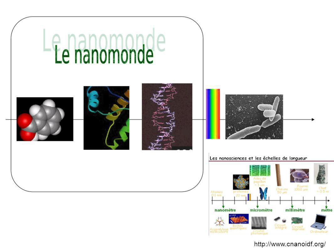 Des cellules cancéreuses dun glioblastome se sont gorgées de nanoparticules de magnétite spécialement enduites jusquà la limite du tissu sain.