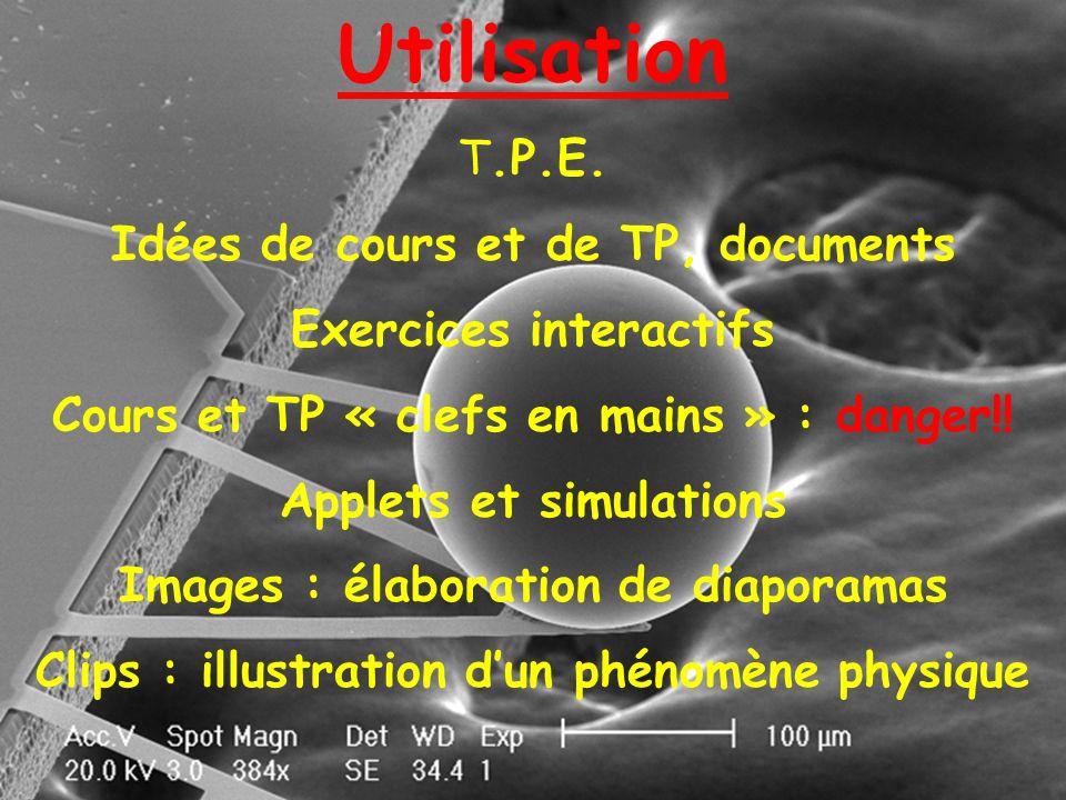 Utilisation T.P.E. Idées de cours et de TP, documents Exercices interactifs Cours et TP « clefs en mains » : danger!! Applets et simulations Images :