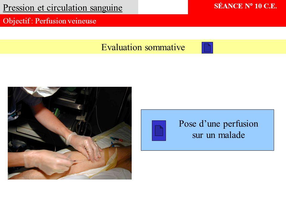 SÉANCE N° 10 C.E. Pression et circulation sanguine Objectif : Perfusion veineuse Pose dune perfusion sur un malade Evaluation sommative