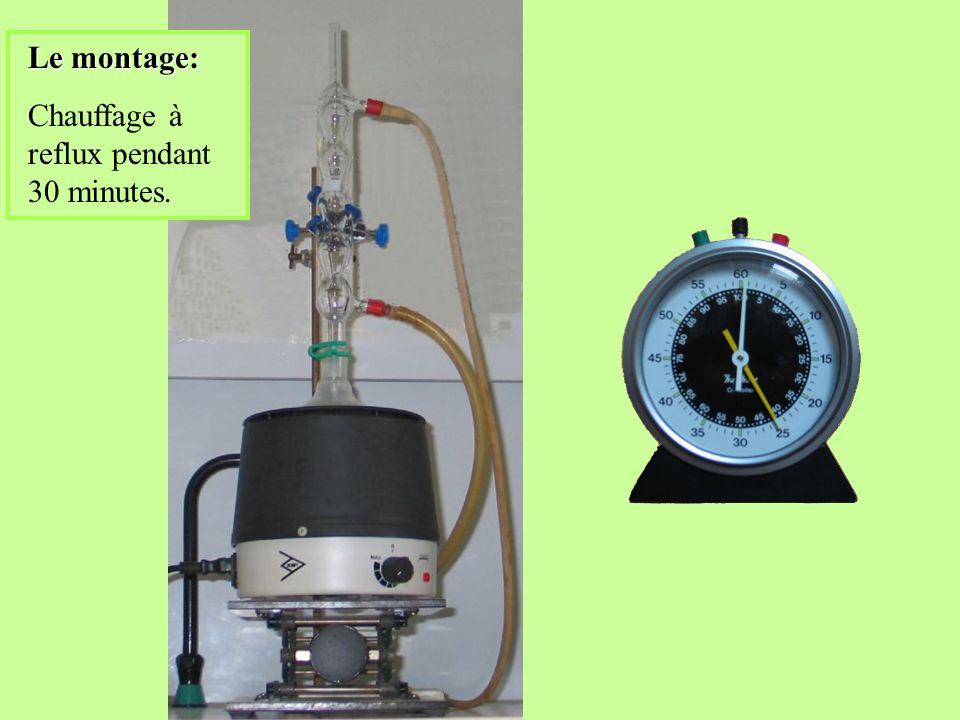 Chauffage du chromatogramme pulvérisé de ninhydrine sur plaque chauffante. Chromatogramme obtenu: