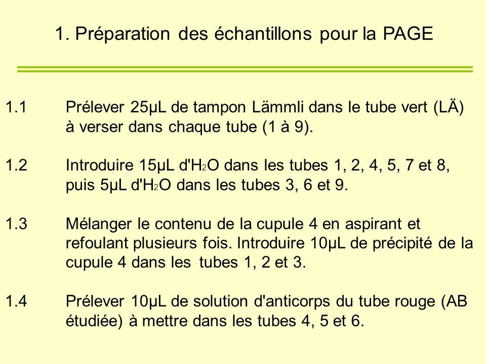 1.1 Prélever 25µL de tampon Lämmli dans le tube vert (LÄ) à verser dans chaque tube (1 à 9). 1.2 Introduire 15µL d'H 2 O dans les tubes 1, 2, 4, 5, 7