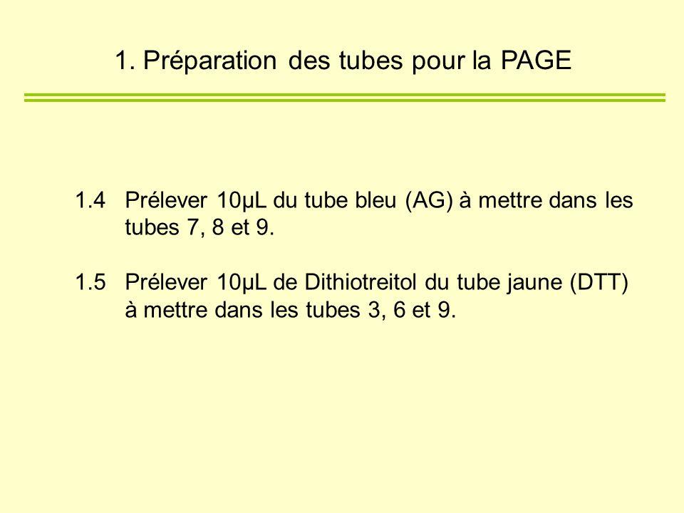 1.4 Prélever 10µL du tube bleu (AG) à mettre dans les tubes 7, 8 et 9. 1.5 Prélever 10µL de Dithiotreitol du tube jaune (DTT) à mettre dans les tubes
