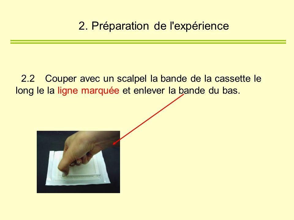 2.2 Couper avec un scalpel la bande de la cassette le long le la ligne marquée et enlever la bande du bas. 2. Préparation de l'expérience