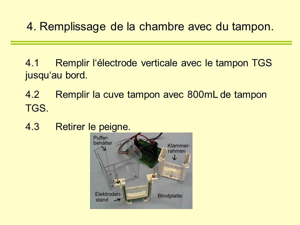 4.1Remplir lélectrode verticale avec le tampon TGS jusquau bord. 4.2Remplir la cuve tampon avec 800mL de tampon TGS. 4.3Retirer le peigne. 4. Rempliss