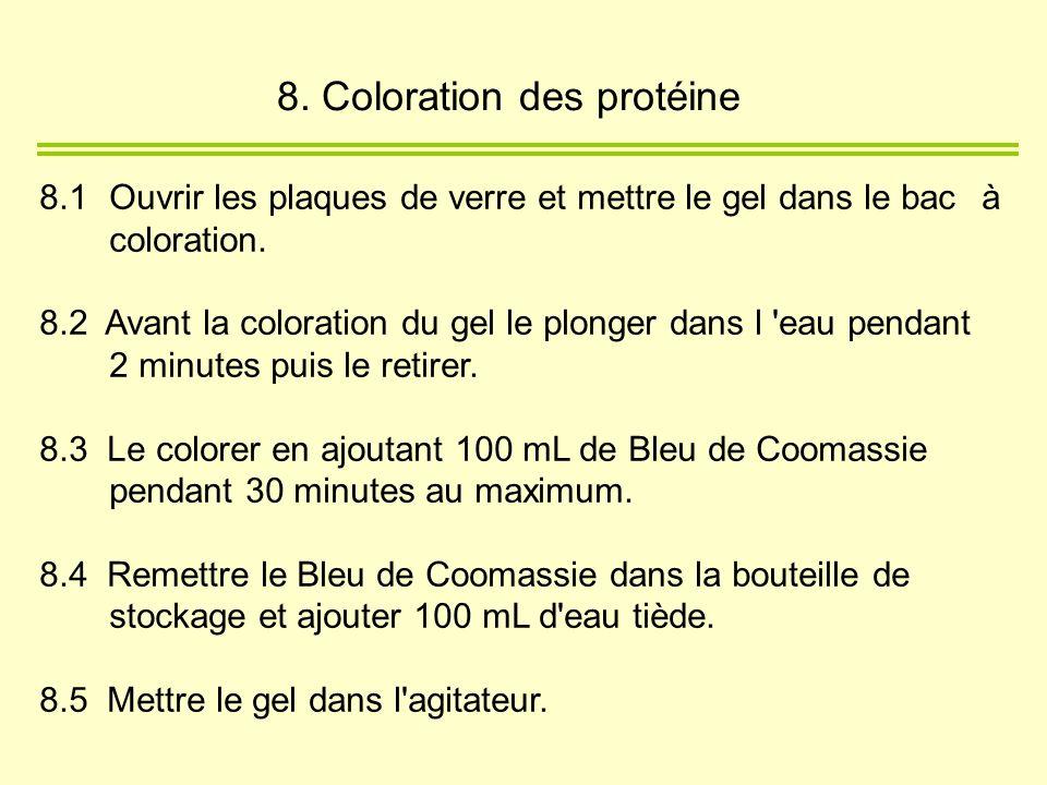 8.1Ouvrir les plaques de verre et mettre le gel dans le bac à coloration. 8.2 Avant la coloration du gel le plonger dans l 'eau pendant 2 minutes puis