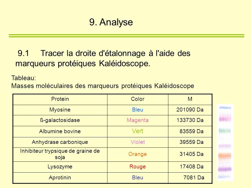 Tableau: Masses moléculaires des marqueurs protéiques Kaléidoscope 9.1 Tracer la droite d'étalonnage à l'aide des marqueurs protéiques Kaléidoscope. P