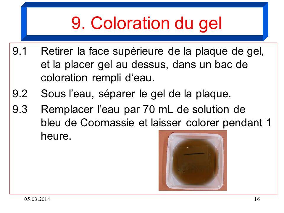 05.03.201416 9.1 Retirer la face supérieure de la plaque de gel, et la placer gel au dessus, dans un bac de coloration rempli deau. 9.2Sous leau, sépa