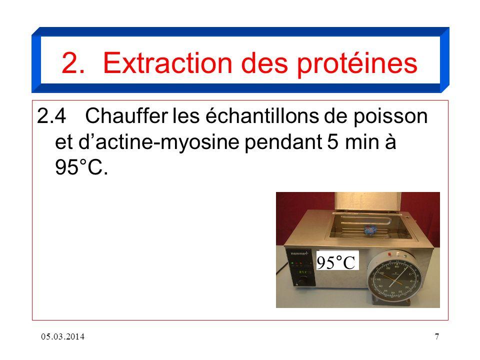2.4Chauffer les échantillons de poisson et dactine-myosine pendant 5 min à 95°C. 05.03.20147 95°C 2. Extraction des protéines