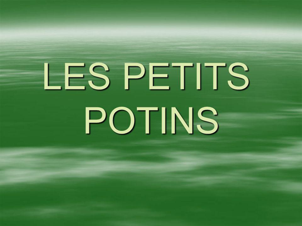 LES PETITS POTINS