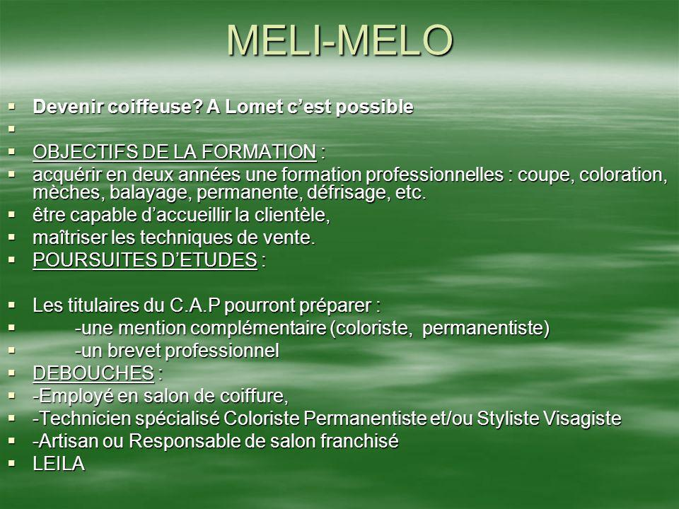MELI-MELO Devenir coiffeuse? A Lomet cest possible Devenir coiffeuse? A Lomet cest possible OBJECTIFS DE LA FORMATION : OBJECTIFS DE LA FORMATION : ac