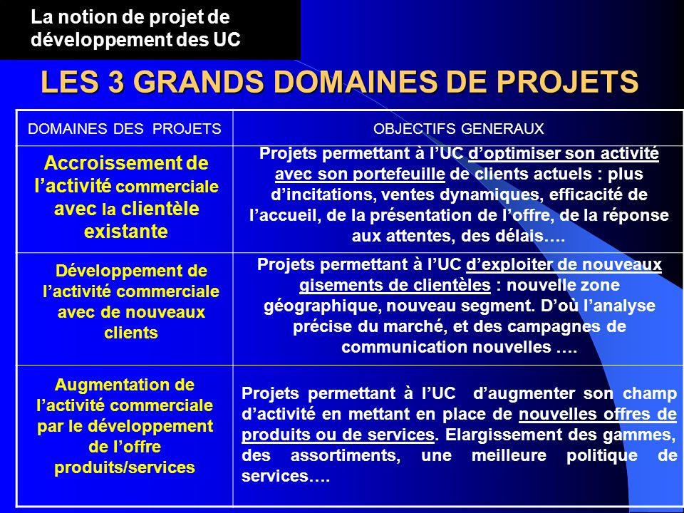 DOMAINES DES PROJETSOBJECTIFS GENERAUX LES 3 GRANDS DOMAINES DE PROJETS La notion de projet de développement des UC Accroissement de lactivité commerc