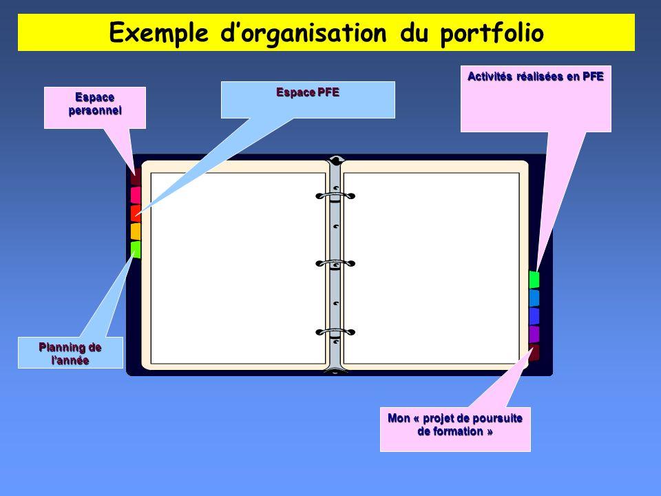 Planning de lannée Activités réalisées en PFE Mon « projet de poursuite de formation » Espace PFE Espace personnel Exemple dorganisation du portfolio