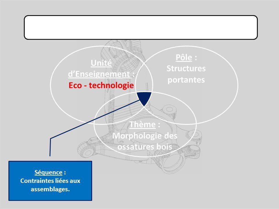 Exemple 3 : Unité dEnseignement : Eco - technologie Pôle : Structures portantes Thème : Morphologie des ossatures bois Séquence : Contraintes liées aux assemblages.
