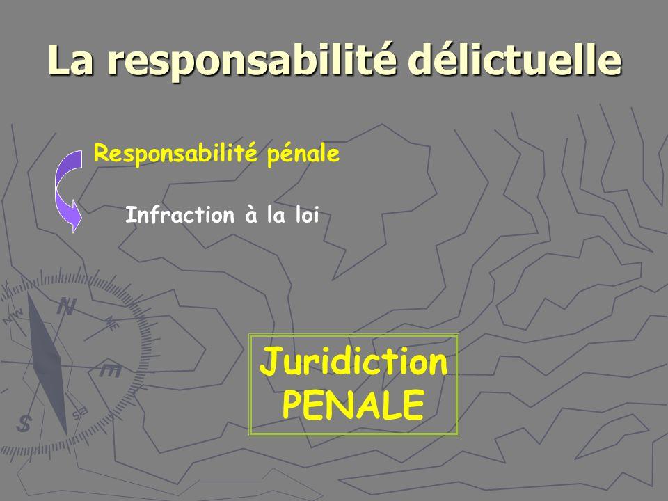 La responsabilité délictuelle Responsabilité pénale Juridiction PENALE Infraction à la loi