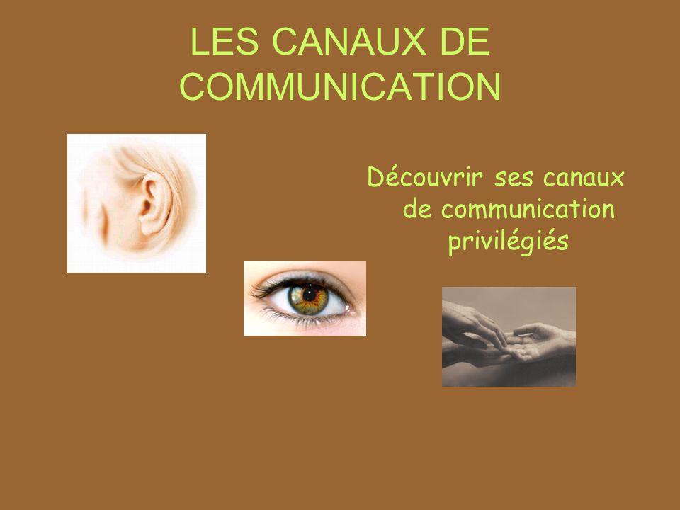 LES CANAUX DE COMMUNICATION Découvrir ses canaux de communication privilégiés