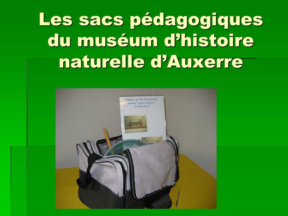 Les sacs pédagogiques du muséum dhistoire naturelle dAuxerre