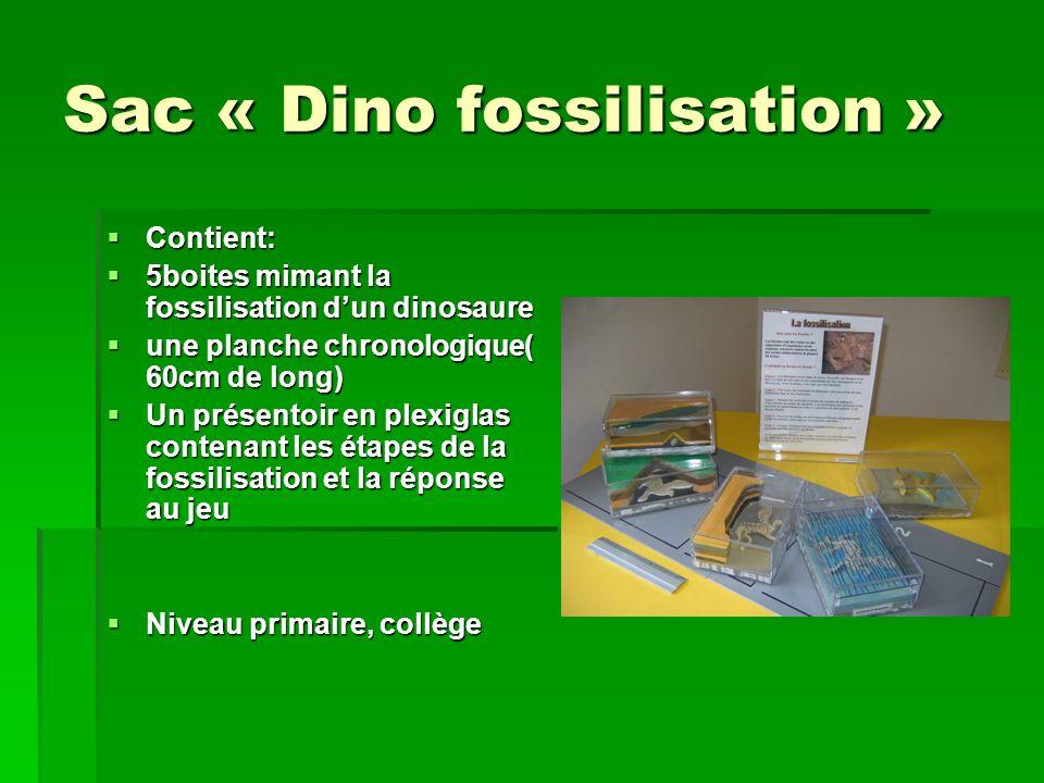 Sac « fossiles » Contient Contient 1 boite invertébrés(14 fossiles) 1 boite invertébrés(14 fossiles) 1 boite vertébrés(4 fossiles) 1 boite vertébrés(4 fossiles) 1boite végétaux(4 fossiles) 1boite végétaux(4 fossiles) Fiche descriptive pour chaque fossile Fiche descriptive pour chaque fossile Un livret pédagogique ( format A5) Un livret pédagogique ( format A5) Niveau primaire, collège, lycée.
