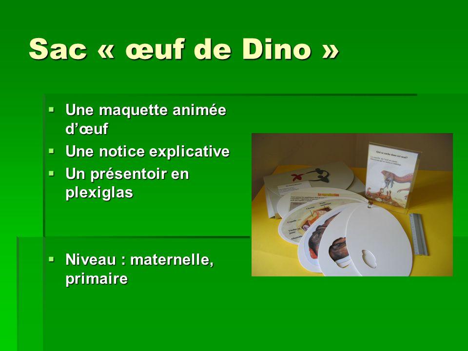 Sac « œuf de Dino » Une maquette animée dœuf Une maquette animée dœuf Une notice explicative Une notice explicative Un présentoir en plexiglas Un prés